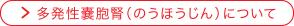jinzounaikawomottosiru-02